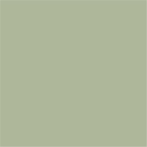 verf farrow ball modern eggshell vert de terre 234 paint. Black Bedroom Furniture Sets. Home Design Ideas